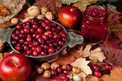 Frutas de la acción de gracias Imagenes de archivo
