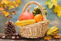 Frutas de la calabaza como decoración Foto de archivo