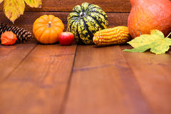 Frutas de la calabaza como la decoración y fondo Imagen de archivo libre de regalías