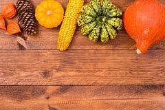 Frutas de la calabaza como la decoración y fondo Imagenes de archivo