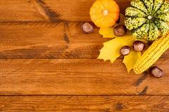 Frutas de la calabaza como la decoración y fondo Fotografía de archivo libre de regalías