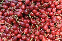 Frutas de la cereza Imagen de archivo libre de regalías