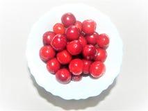 Frutas de la cereza con las hojas fotos de archivo libres de regalías