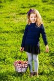 Frutas de la cesta de la comida campestre de la muchacha Imagen de archivo