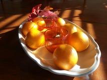 Frutas de la cosecha Fotografía de archivo libre de regalías