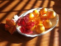 Frutas de la cosecha Fotos de archivo libres de regalías