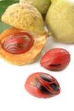 Frutas de la nuez moscada moscada Fotografía de archivo libre de regalías