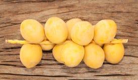 Frutas de la palma datilera Imagen de archivo libre de regalías