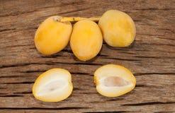 Frutas de la palma datilera Fotos de archivo