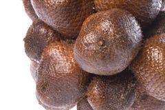 Frutas de la serpiente aisladas Foto de archivo libre de regalías
