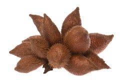 Frutas de la serpiente aisladas Imagen de archivo
