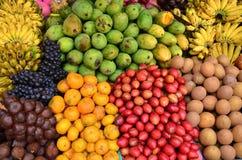 Frutas de la variedad Foto de archivo libre de regalías