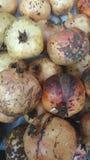 Frutas de las granadas cosecha Fotos de archivo libres de regalías
