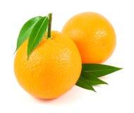Frutas de las naranjas con las hojas sobre blanco Imagenes de archivo