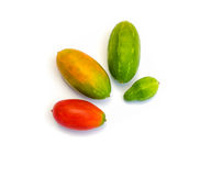 Frutas de los grandis de la Coccinia (cucurbitáceos) Imagenes de archivo