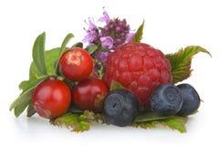 Frutas de madeira Fotos de Stock