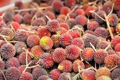 Frutas de Pulasan Imagen de archivo