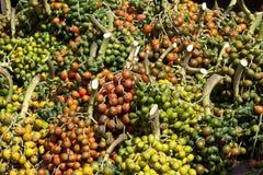 Frutas de Pupunheira Foto de archivo libre de regalías