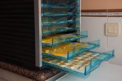 Frutas de sequía en la secadora imágenes de archivo libres de regalías