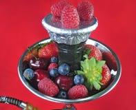 Frutas de Shiha Foto de archivo libre de regalías