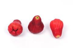 Frutas de Syzygiumsamarangense MerretPerry Imagenes de archivo