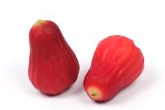Frutas de Syzygiumsamarangense MerretPerry Fotografía de archivo libre de regalías