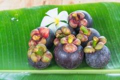 Frutas de Tailandia Fotografía de archivo libre de regalías
