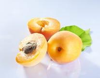 Frutas del albaricoque imagenes de archivo