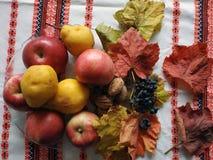 Frutas del aldeano fotografía de archivo libre de regalías