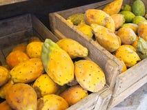 Frutas del cacto en embalaje Imagen de archivo