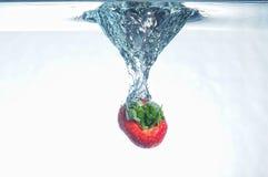 Frutas del chapoteo Imagen de archivo