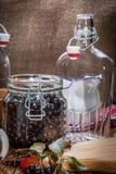 Frutas del chokeberry negro preparadas para procesar fotografía de archivo libre de regalías