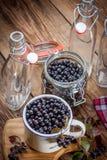 Frutas del chokeberry negro preparadas para procesar fotos de archivo libres de regalías