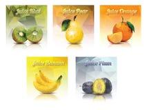 Frutas del jugo Imágenes de archivo libres de regalías