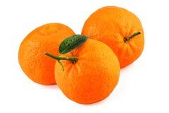 Frutas del mandarín de la mandarina Imágenes de archivo libres de regalías