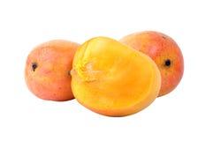 Frutas del mango Imagenes de archivo
