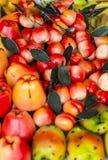 Frutas del mazapán Foto de archivo libre de regalías