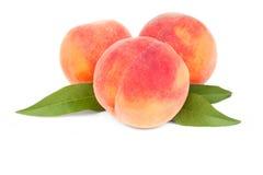 Frutas del melocotón Fotografía de archivo libre de regalías