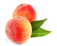 Frutas del melocotón con la hoja aislada imagen de archivo libre de regalías