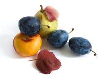 Frutas del otoño Imagen de archivo