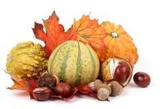 Frutas del otoño fotos de archivo