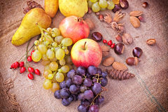 Frutas del otoño - cosecha del otoño imagen de archivo