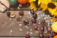 Frutas del otoño en la tabla Foto de archivo libre de regalías