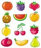 Frutas del vector Foto de archivo libre de regalías