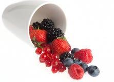 Frutas del verano Imágenes de archivo libres de regalías