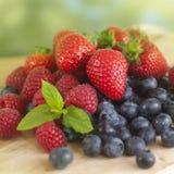 Frutas del verano fotografía de archivo libre de regalías