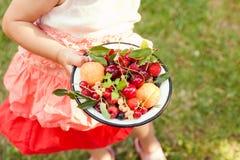 Frutas del verano imagen de archivo libre de regalías