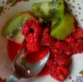 Frutas del verano Imagen de archivo
