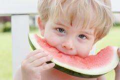 Frutas del verano Foto de archivo