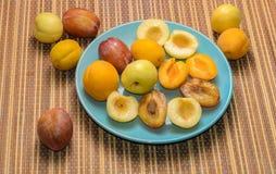 Frutas del verano: manzanas, peras, albaricoques, ciruelos fotografía de archivo